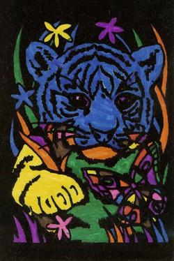 Tiger_11